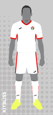 Jordan (home) 2018-19 by Joma